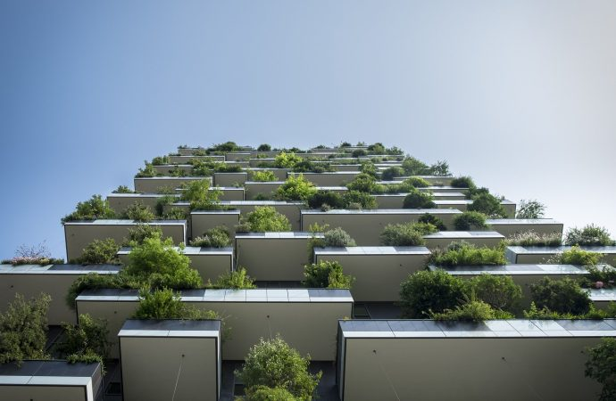 Sustainable Real Estate: Why Invest in Green Buildings